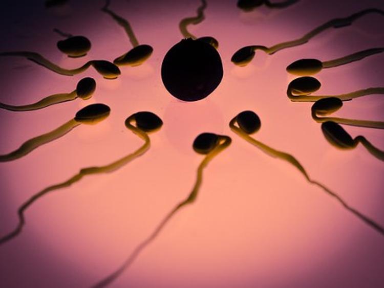 Владелец клиники подменял донорскую сперму и незаконно стал отцом 60 детей