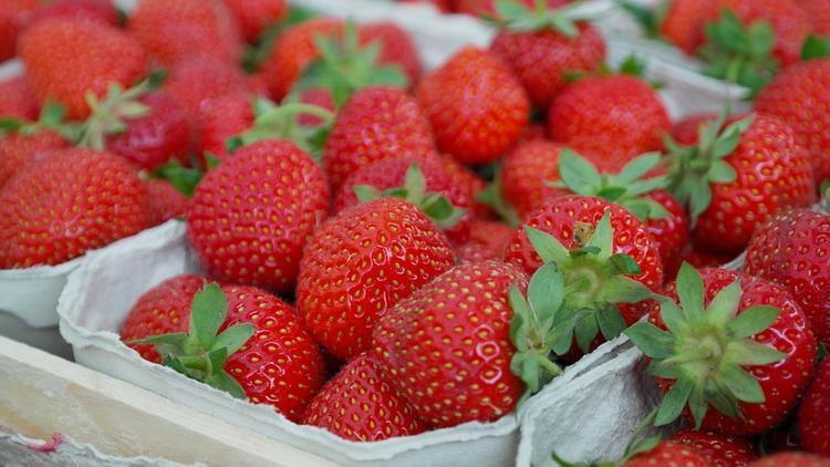 Ранние ягоды и фрукты наносят вред здоровью