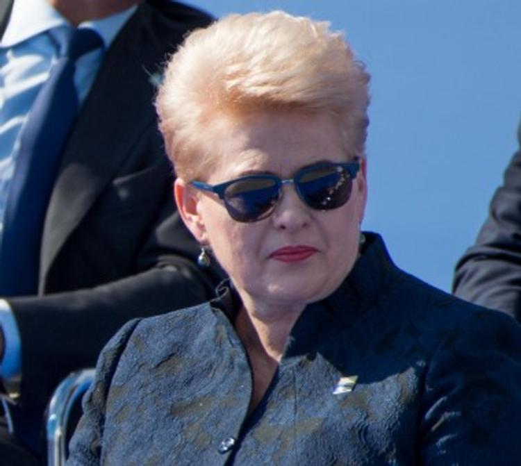 Президент Литвы назвала Белоруссию и Россию главными угрозами для страны