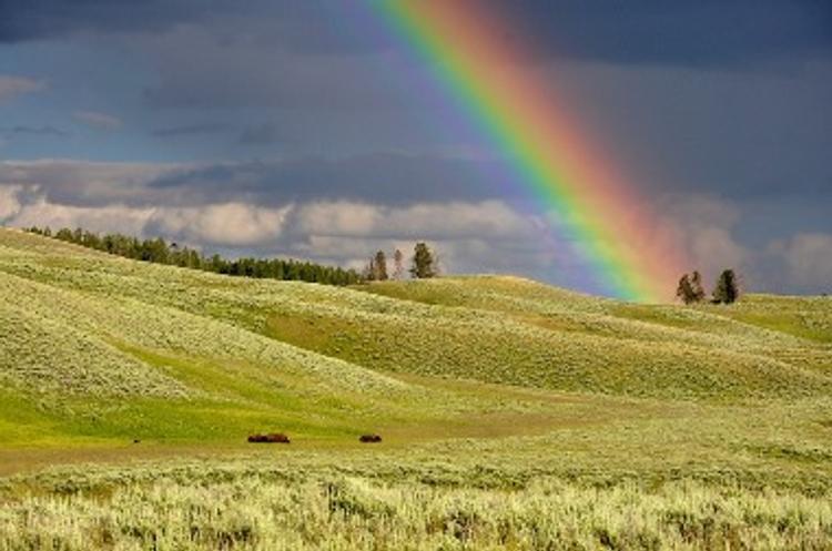 NASA с помощью химикатов раскрасят небо над США в цвета радуги