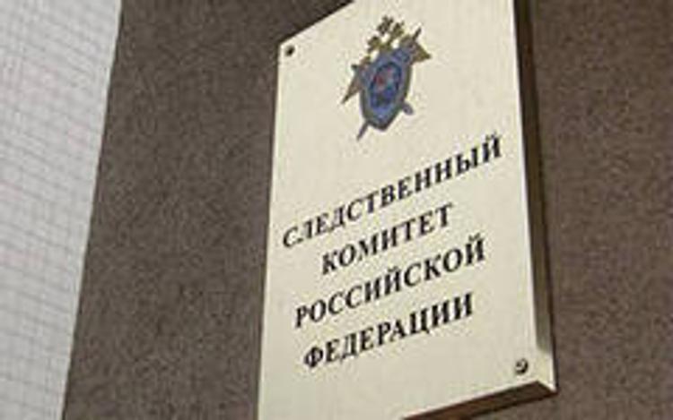 СКР: Информацию об избиении девочки в Москве проверяют следователи