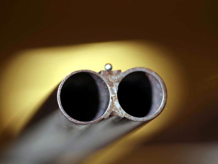 Во время игры брат случайно застрелил четырехлетнюю сестру