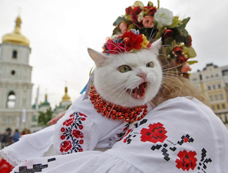 Рогозин высказался о подарке Климкина генсеку ООН - украинской вышиванки