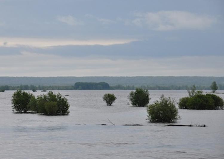 Учёные хотят распрямить великую русскую реку