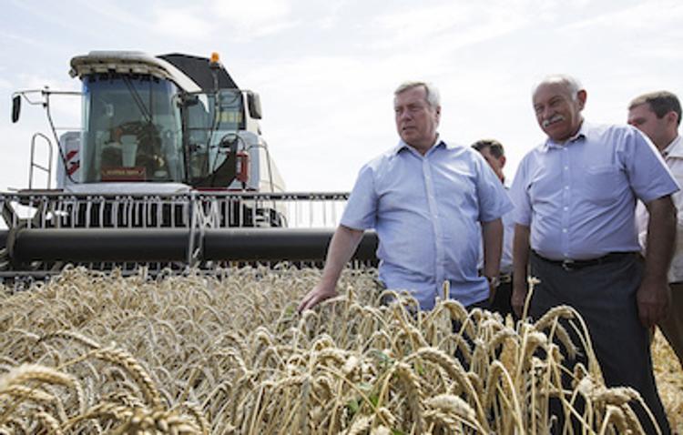 Ростовская область собрала рекордный за всю историю урожай