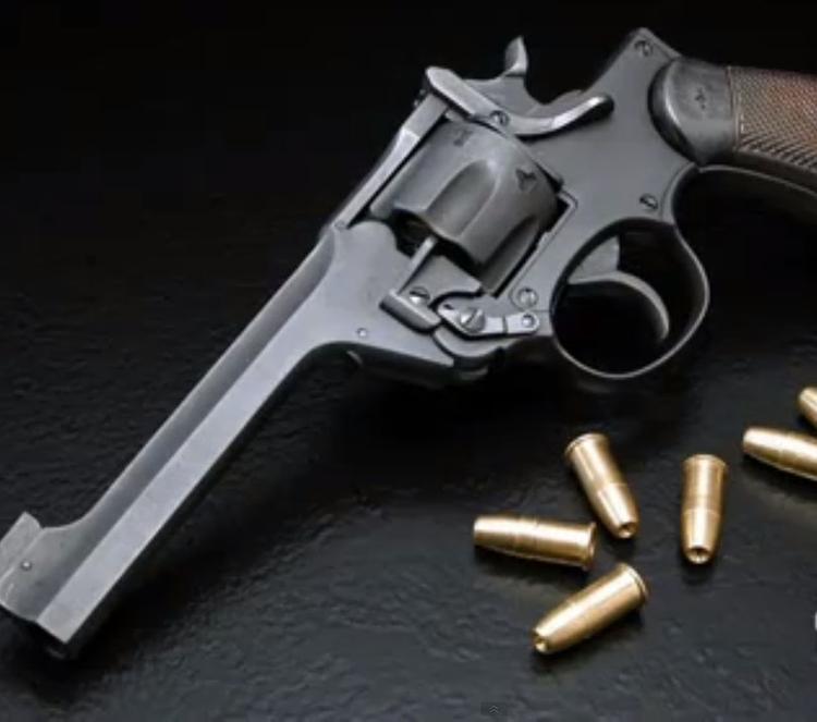 75-летний инвалид пытался застрелить директора дома престарелых