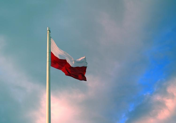 В Совфеде высказались о возможности выплат репараций Польше: шансы нулевые