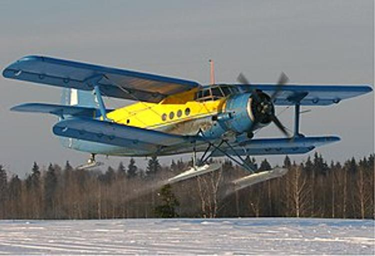 Экипаж потерпевшего крушение  Ан-2 в последний момент увел самолет от зрителей