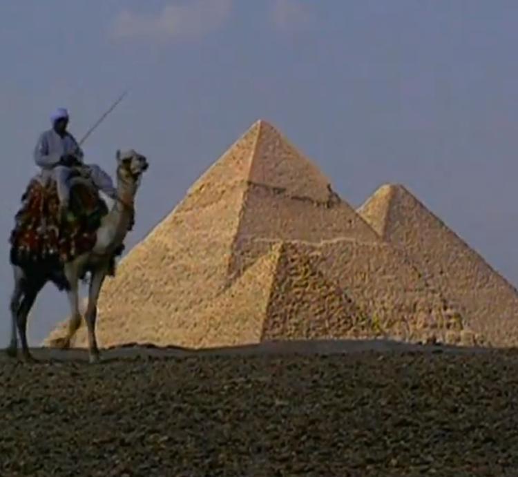 Уровень безопасности в аэропорту Каира удостоился похвал специалистов из России