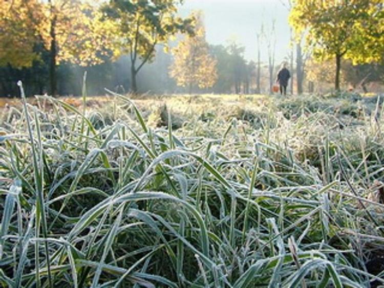 На Урал приходят заморозки
