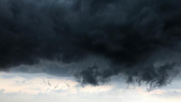 МЧС распространило экстренное предупреждение о непогоде в Москве и области