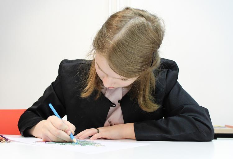 Свердловские школы оснастили американскими планшетами пятилетней давности
