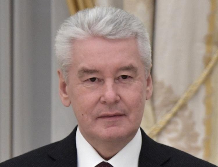 Собянин: все председатели УИК в Ново-Переделкино заменены