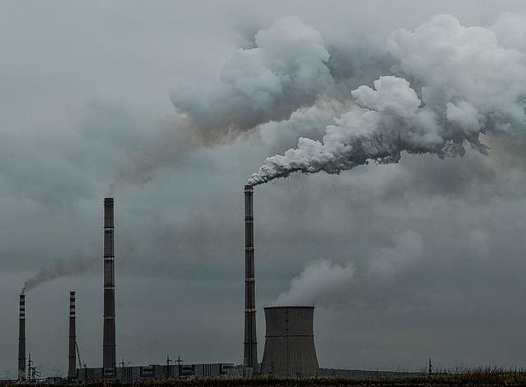 Эколог назвал виновников неприятного запаха в Подмосковье