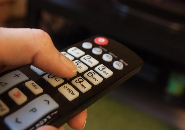 Британские ученые научились управлять телевизором при помощи кота