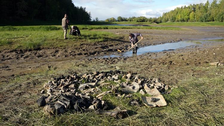 Сибирские ученые нашли самую северную стоянку человека эпохи палеолита в ХМАО