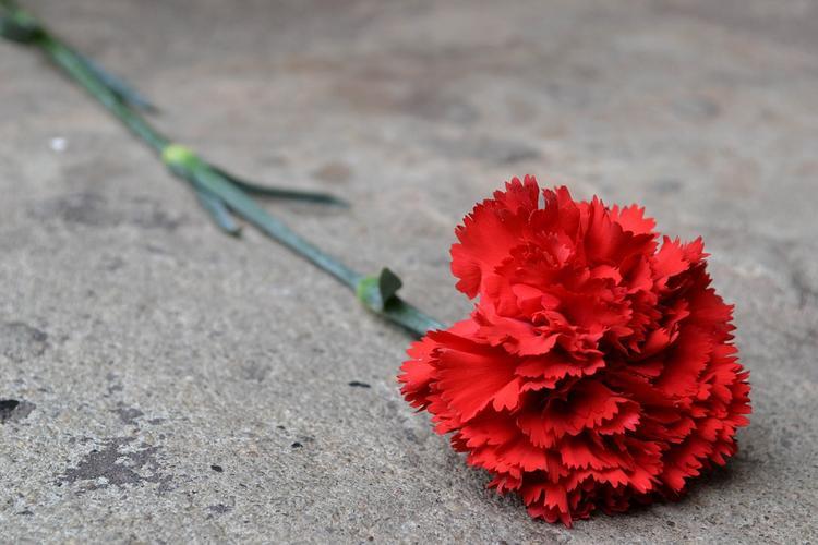 К посольству США в Москве несут свечи и цветы после трагедии в Лас-Вегасе