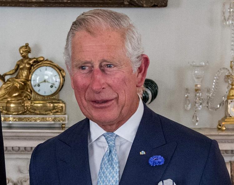 Британский принц Чарльз нашел плюсы в деятельности сомалийских пиратов