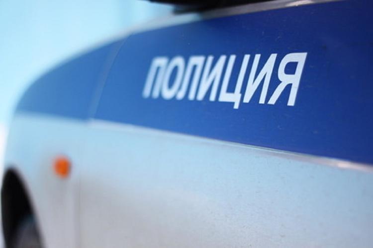 Полиция ищет автомобиль, намеренно сбивший пешеходов в Новой Москве