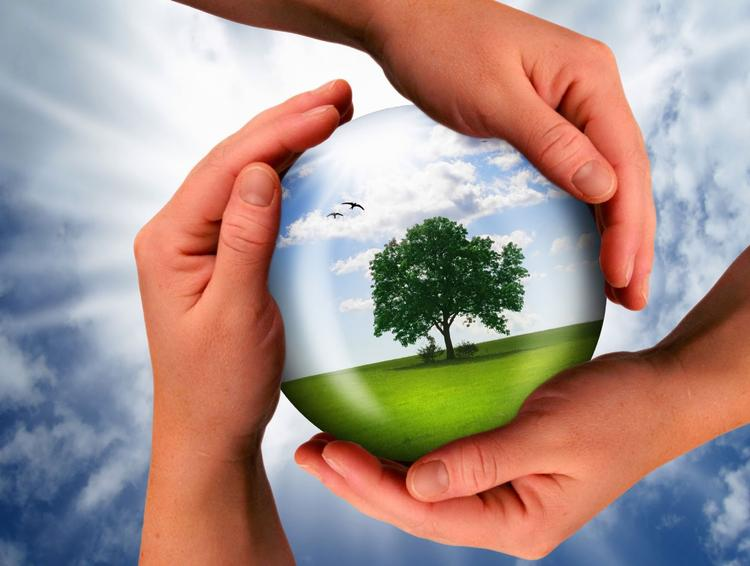 Молодые экологи Южного Урала получат миллион рублей