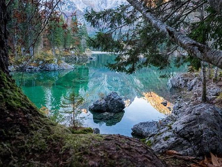 Во Владимирской области пропало лесное озеро