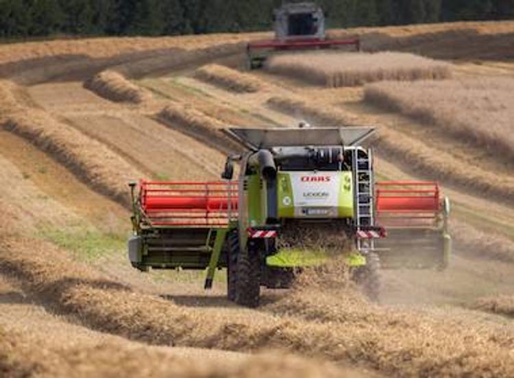 Урожай зерна впервые достиг 30 центнеров с гектара