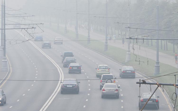 В МЧС выпустили предупреждение для подмосковных водителей и пешеходов