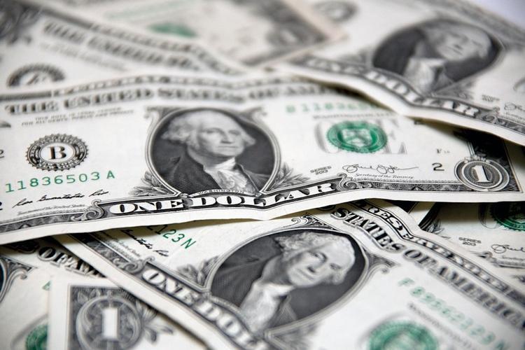 Граждане РФ в ближайшие месяцы ожидают роста курса доллара