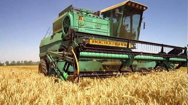 На Южном Урале собрали рекордные объемы зерна за последние 25 лет