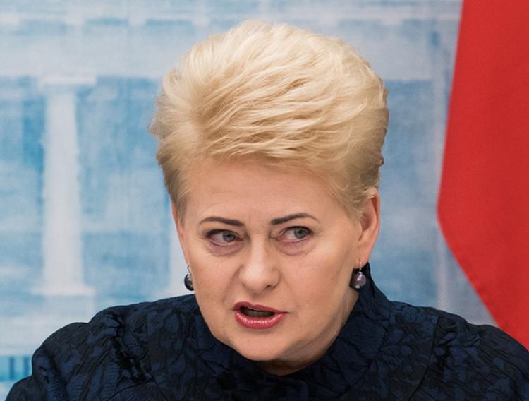 Президент Литвы считает, что с Россией лучше сотрудничать, чем воевать