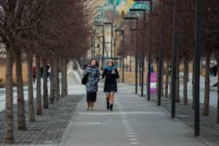 В Москве теплая и пасмурная погода: температура превысила норму на 10 градусов