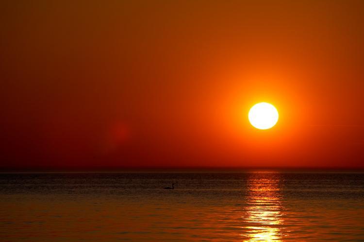 Астрономы обнаружили признак возможной скорой смерти Солнца