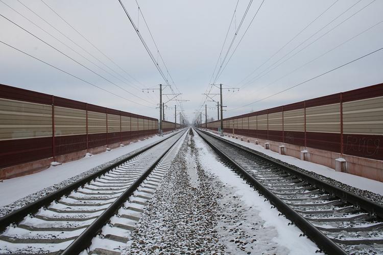 На Курском направлении МЖД поезд сбил женщину с ребенком