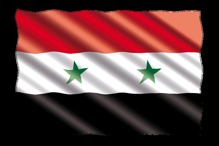 В Восточной Гуте жители двух деревень подняли сирийские флаги