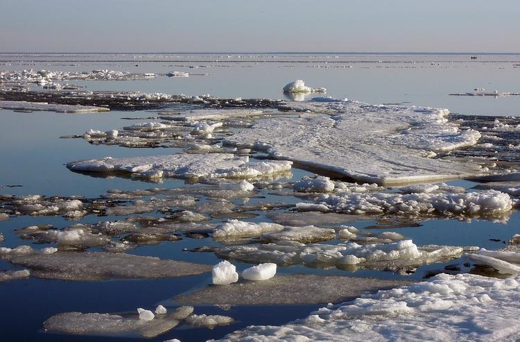 В Охотском море спасли 16 дрейфовавших на льдинах рыбаков