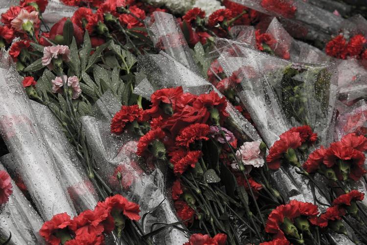 На Украине полиция задержала 25 человек во время празднования Дня Победы
