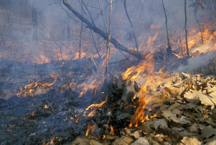 Спасатели ежедневно разьясняют населению правила пожарной безопасности