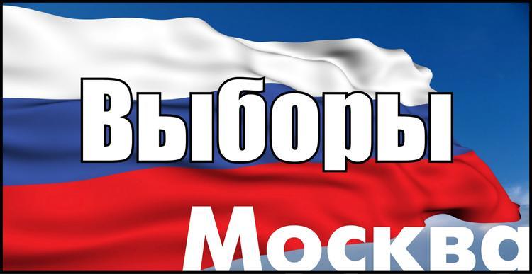 От участия в выборах мэра Москвы сами отказались 26 кандидатов из 33