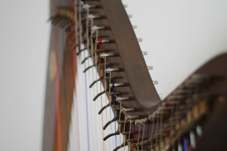 На Таманском полуострове обнаружены древнегреческие музыкальные инструменты