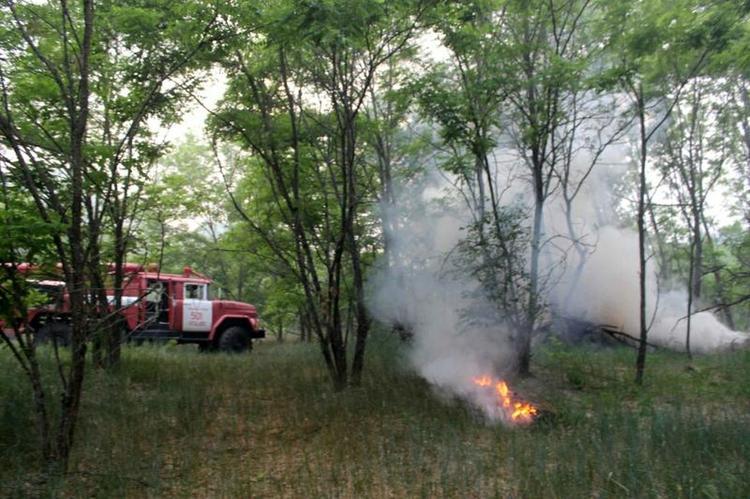 Более миллиона гектаров тайги охвачены огнем