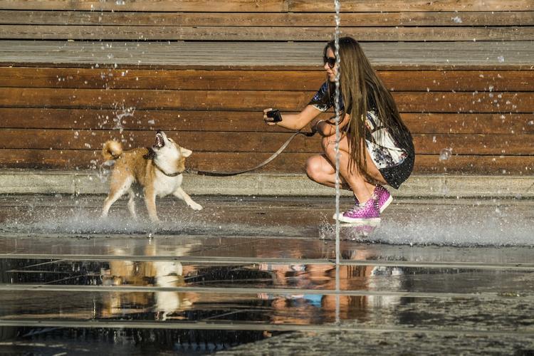 В выходные в Москве будет превышена климатическая норма по температуре