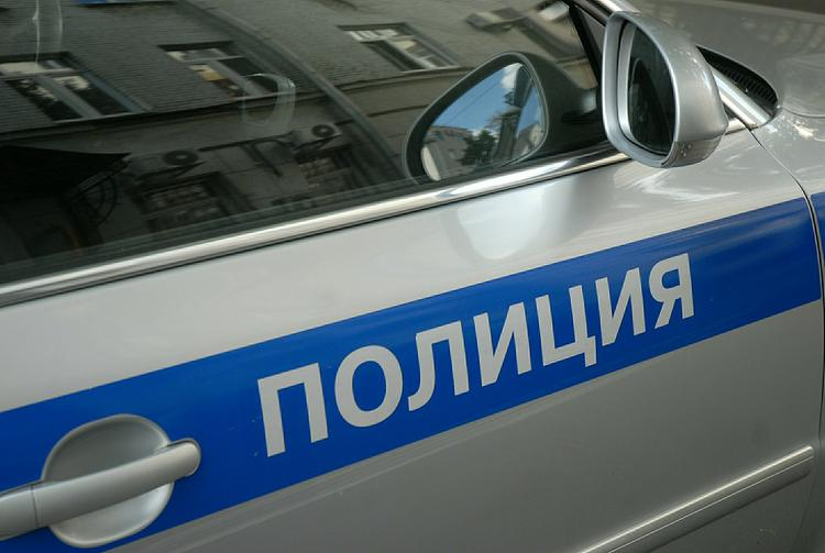 Крымские автоинспекторы обезвредили главаря банды с помощью боевого самбо