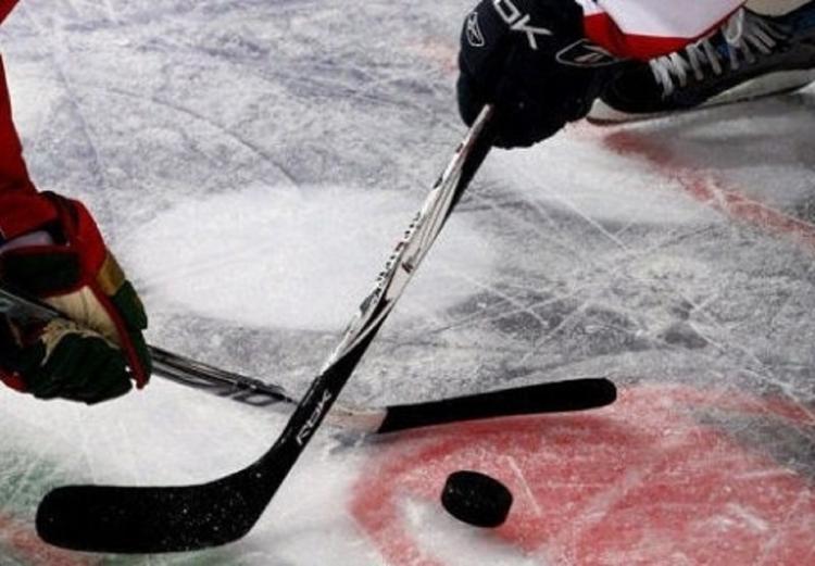 Новый рекорд: 34 тысячи мягких игрушек выбросили на лед фанаты хоккея