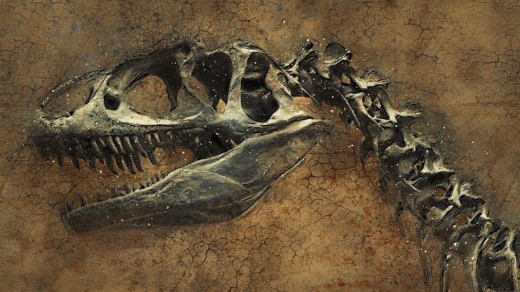 В китайском медном руднике нашли следы динозавров