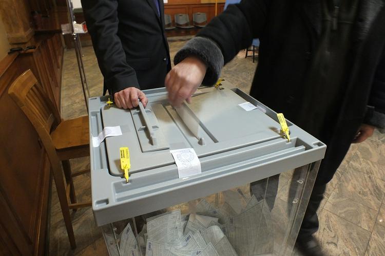 Политолог оценил риски новой системы голосования