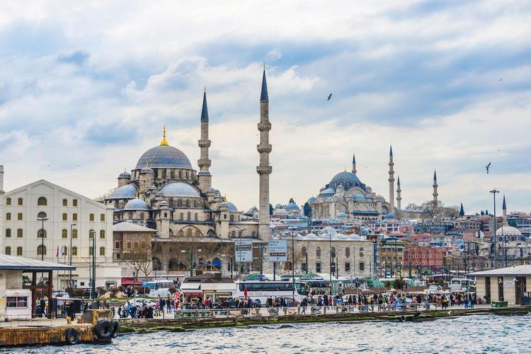 Живут же люди! Древняя Турция – неожиданные «первенцы»: тюльпаны, кофе и коровы