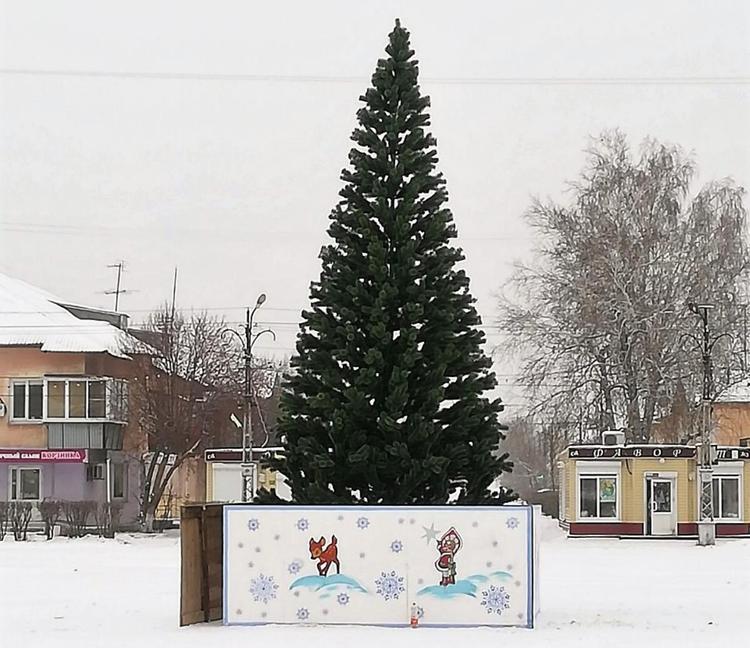 РМК подарила жителям Первомайского большую елку
