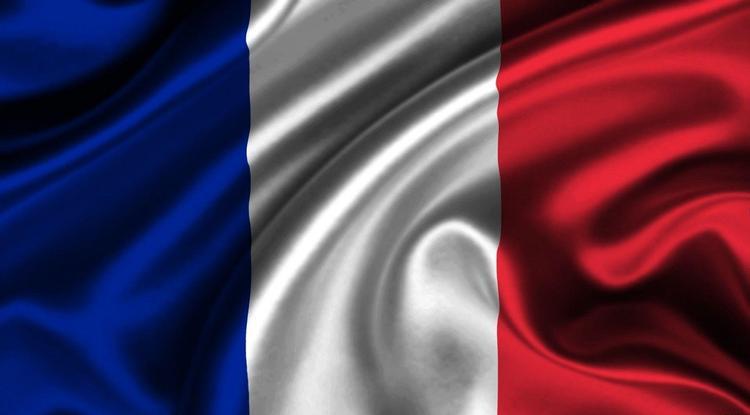 Франция выдала России экс-министра финансов Подмосковья