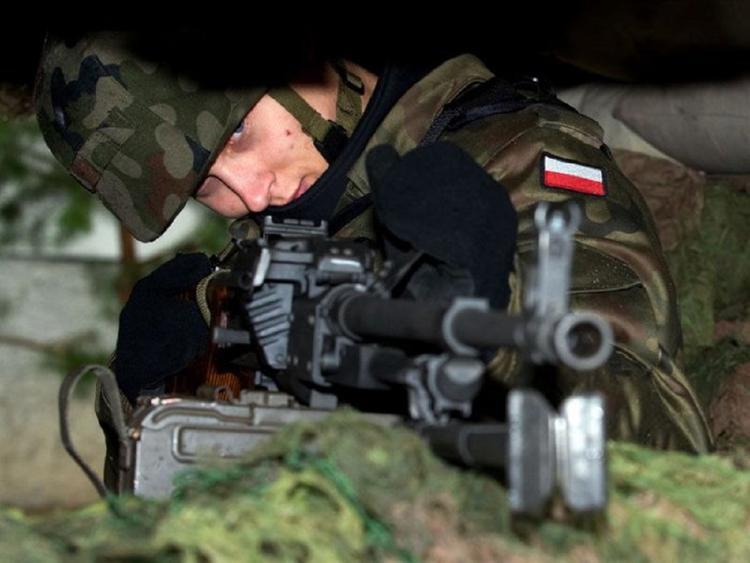 На границе Польши задержан украинец с артиллерийской системой