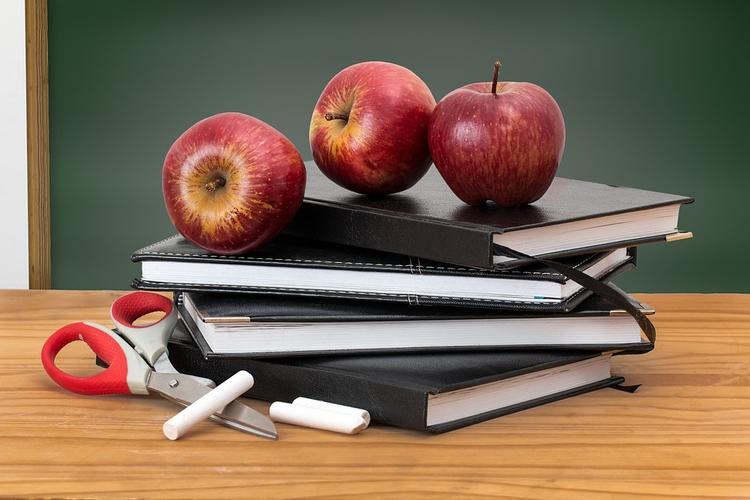Со своим нельзя: школьникам запретят приносить еду из дома